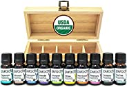 PURA D'OR Perfect 10 Essential Oil Wood Box Set 10mL USDA Organic 100% Pure Therapeutic Grade (Tea Tree-Lemon-