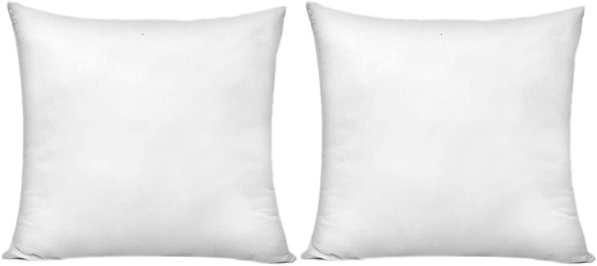 HIPPIH 20 x 20 Inch Pillow Inserts (Set of 2), Decorative Throw Pillow Inserts, Hypoallergenic Square Pillow Form Insert with Zips, Upgraded