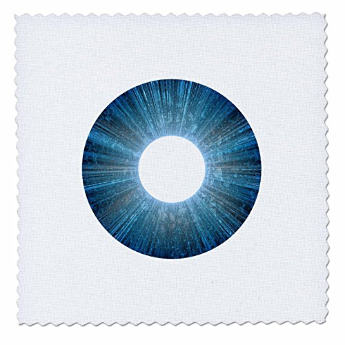 - 3dRose Andrea Haase Art Illustration - Blue Iris Abstract Art - 22x22 inch Quilt Square (qs_282499_9)