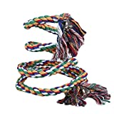 BigFamily Parrot Rope For Pet Bird Coil Swing Perches Cockatiel Conure Budgie Cage Toy