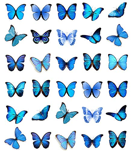 30 Blauwe Vlinders Cupcake Toppers Eetbare Wafer Papier Fairy Cake Toppers Verjaardag Cakes