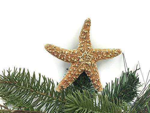Mini Sugar Starfish Christmas Tree Topper