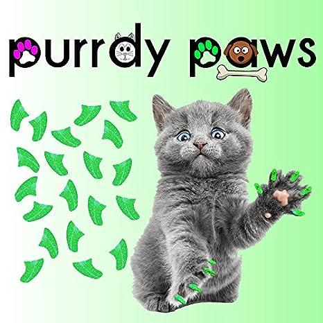Paquete de 40 tapas de uñas suaves para gatos Margarita GLITTER * Paws marca purrdy: Amazon.es: Productos para mascotas