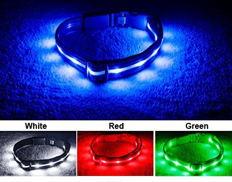 Avanti Safety Premium Quality LED Dog Collar to Keep Your Dog Safe - USB Rechargeable with Water Resistant Flashing Bright Light, Great for Small Medium Large Dogs (Small, White)