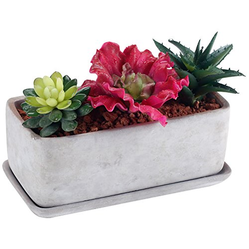 10 inch Modern Gray Pottery Succulent Planter Pot, Rectangular Window Plant Box with Saucer by MyGift