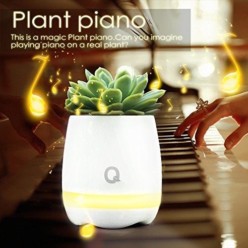Play Piano on a Real Plant Festival Gift Flowerpot Night Light Smart Touch Music Plant Lamp Rechargeable Wireless (Happy Birthday Song)