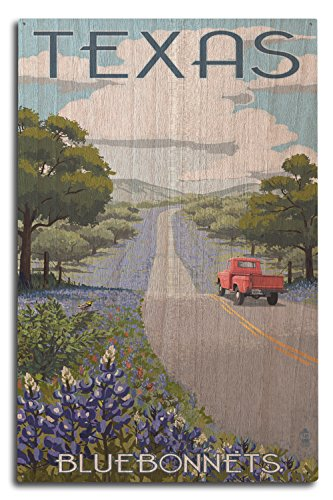 - Lantern Press Texas - Bluebonnets and Highway (10x15 Wood Wall Sign, Wall Decor Ready to Hang)