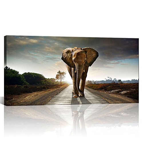 Contemporary Animal Wall Art Elephant Walk On The Road for sale  Delivered anywhere in USA