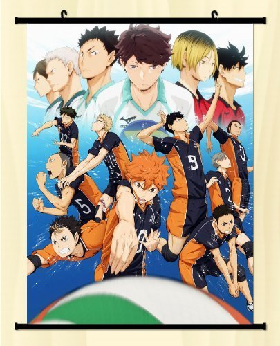 Haikyuu! Shoyo Hinata Shonen Home Decor Poster Wall Scroll Anime Janpanese New es Equal