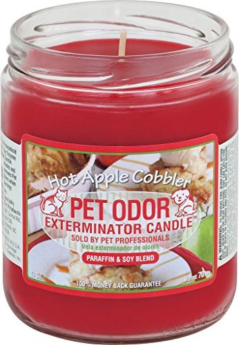 Pet Odor Exterminator Jar Candle - Hot Apple Cobbler by Specialty Pet Products -