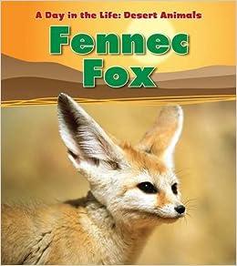 Fennec Fox (A Day in the Life: Desert Animals): Amazon co uk: Anita
