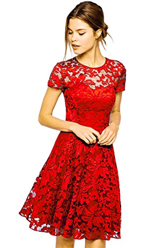 Amoluv Women Round Neck Short Sleeve Pleated Lace Slim Dress Red,Small