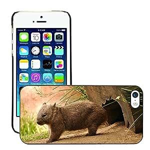 Print Motif Coque de protection Case Cover // V00001798 wombat // Apple iPhone 5 5S 5G