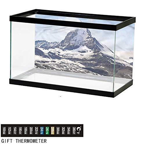 Suchashome Fish Tank Backdrop Mountain,Glacier Summit Scenery,Aquarium Background,48