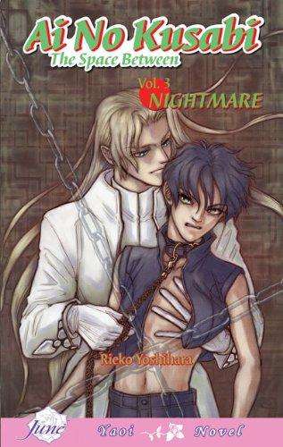 Ai No Kusabi The Space Between Volume 3: Nightmare (Yaoi Novel) (v. 3)