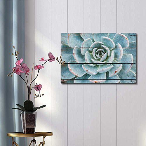 Green and Blue Succulent Rustic Floral Arrangements Pastels Colorful Beautiful Wood Grain Antique