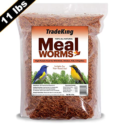 Suet Treat - TradeKing 11 lb Dried Mealworms - High Protein Treat for Wild Birds, Chicken, Fish & Reptiles