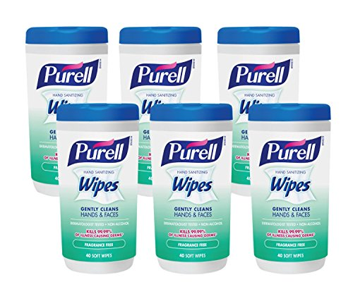 PURELL Hand Sanitizing Wipes, Fragrance Free, 40 Count Sanitizing Wipes Canisters (Pack of 6) - 9121-06-CMR