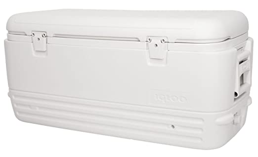 Igloo Polar 120 Neveras portátiles para Pesca, Camping-Deportes ...