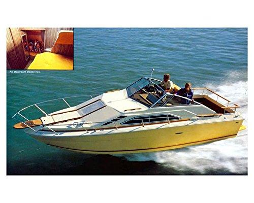 Amazon com: 1981 Sea Ray SRV 260 Sundancer Power Boat Photo Poster