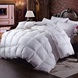 Alternative Comforter - Zingsleep Goose Down Alternative Comforter (Queen 90 x 90 Inch),Ultra Soft Brushed Microfiber, Quilt with Corner Tab for All Season Hypoallergenic Plush Mircofiber Comforter Duvet Insert (Queen Size)