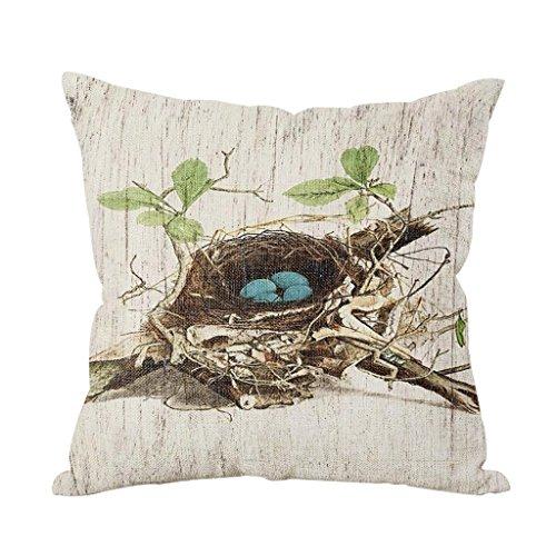 Beautiful Birds Throw Pillows: Amazon.com ME66