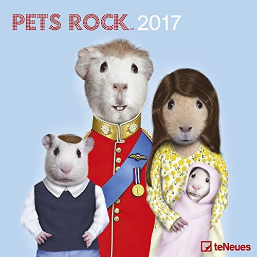 Pets Rock 2017 - Lifestylekalender 2017, Tierkalender, Broschürenkalender, Humorkalender 2017, Wandkalender  -  30 x 30 cm