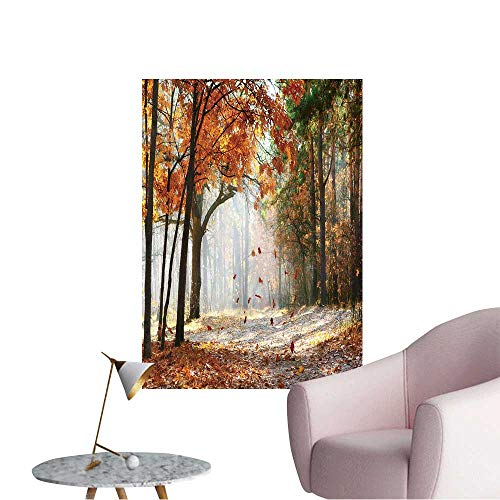 - Wall Stickers for Living Room Falling Oak Leaves on The Scenic Autumn Forest Illuminated by Morning Sun Vinyl Wall Stickers Print,24