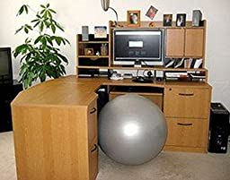 CalCore Fitness Physio Ball Chair