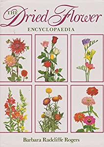 Hardcover The Dried Flower Encyclopaedia (A Friedman Group Book) Book
