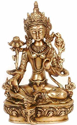 Amazon.com: Exotic India Tara verde en su traje tradicional ...