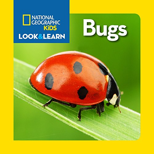National Geographic Kids Look and Learn: Bugs (Look & Learn) ()