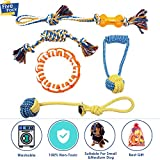 Cheap SlowTon Dog Chew Toy, 5 Pack Rope Teething Toys Puppy Play Teeth Cleaning Pet Toss & Tug for Small Medium Dogs Breed Durable Safe Washable Frisbee Ball Toy Interactive Puppies