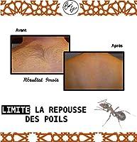 CosmEthics - Aceite de hormigas para una eliminación definitiva ...