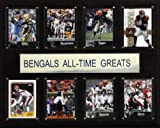 NFL Cincinnati Bengals All-Time Greats Plaque