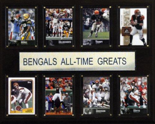 NFL Cincinnati Bengals All-Time Greats Plaque