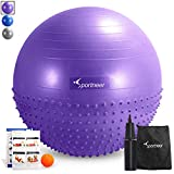 Sportneer Excercise Ball Anti-burst Dual-sided Balance Yoga Ball with Pump, Massage Ball, Workout Guide and Carrying Bag, Purple, 65cm