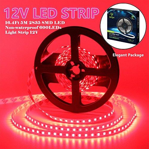 Led Strip Lighting Signage in Florida - 6