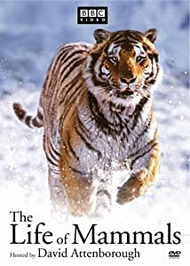 Life of Mamals, the [Import]