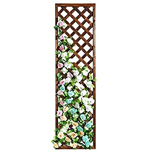 Rectangular Wood Garden Trellis, Wall Mounted Lattice Plant Screen, Brown