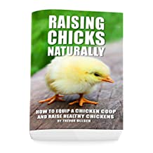 Raising Chicks Naturally: How To Equip A Chicken Coop And Raise Healthy Chickens