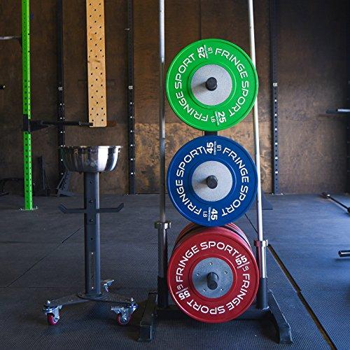 Onefitwonder Vertical Barbell Bumper Plate Rack Storage By Fringe Sport Buy Online In Belize At Desertcart Productid 11951177