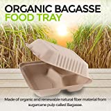 Bagasse Clamshell Takeout Containers, Biodegradable