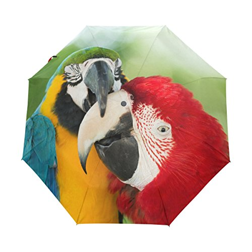 My Little Nest Beautiful Parrots Couple Umbrella Sun Rain Windproof Travel Umbrella with Auto Open Close Button by My Little Nest