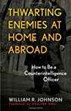 Thwarting Enemies at Home and Abroad, William R. Johnson, 1589012550