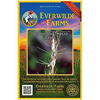 Everwilde Farms Mylar Seed Packet 200 Kitchen Sage Wildflower Seeds
