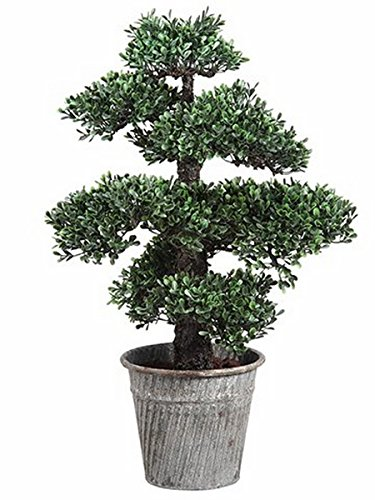 One 24 inch Indoor or Outdoor Artificial Boxwood Bonsai Tree in Pot