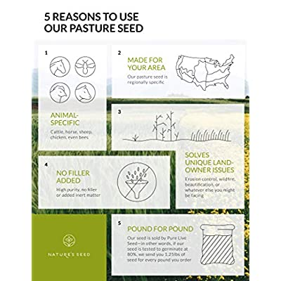 Nature's Seed PB-SADC-0.5-A 0.5 Acre South-Atlantic Transitional Dairy Cow Pasture Blend : Garden & Outdoor
