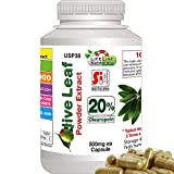 Olive Leaf Powder Extract, 20% Oleuropein - Free Shipping, 480 Capsules x 450mg