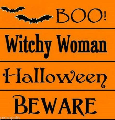 Stencil Lot Halloween Boo! Beware Witchy Woman Bats -